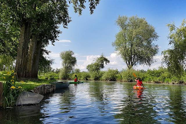 Spływ kajakowy Kargowa